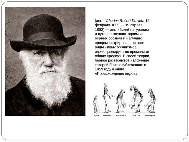 Чарльз Ро́берт Да́рвин (англ.Charles Robert Darwin; 12 февраля 1809— 19 апр...