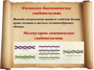 Физиолого-биохимические свидетельства. Методы иммунологии выявили сходство бе