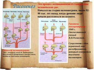 Расогенез Это процесс возникновения и становления человеческих рас. Начался н
