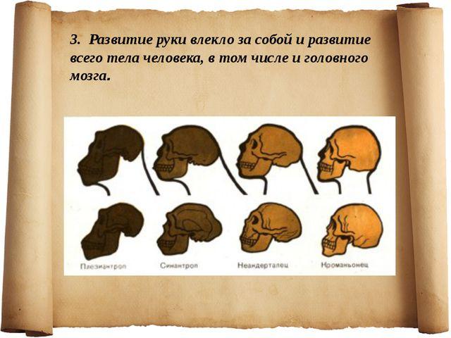 3. Развитие руки влекло за собой и развитие всего тела человека, в том числе...