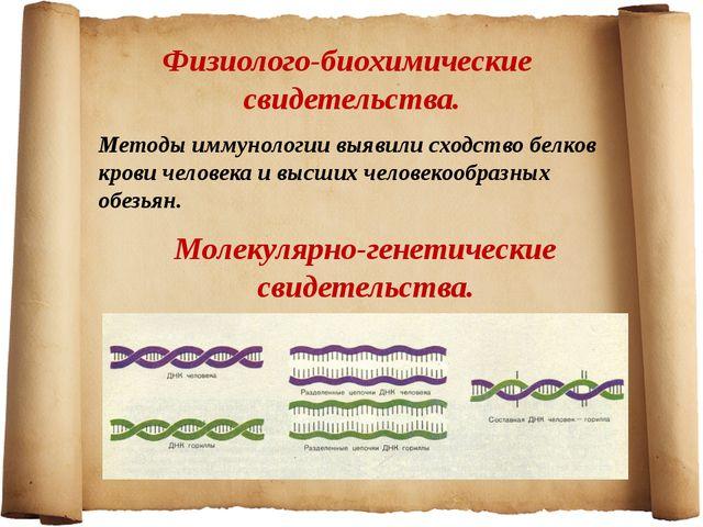 Физиолого-биохимические свидетельства. Методы иммунологии выявили сходство бе...