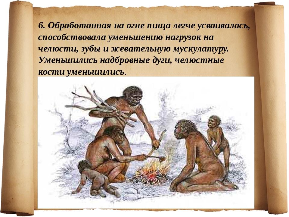 6. Обработанная на огне пища легче усваивалась, способствовала уменьшению наг...