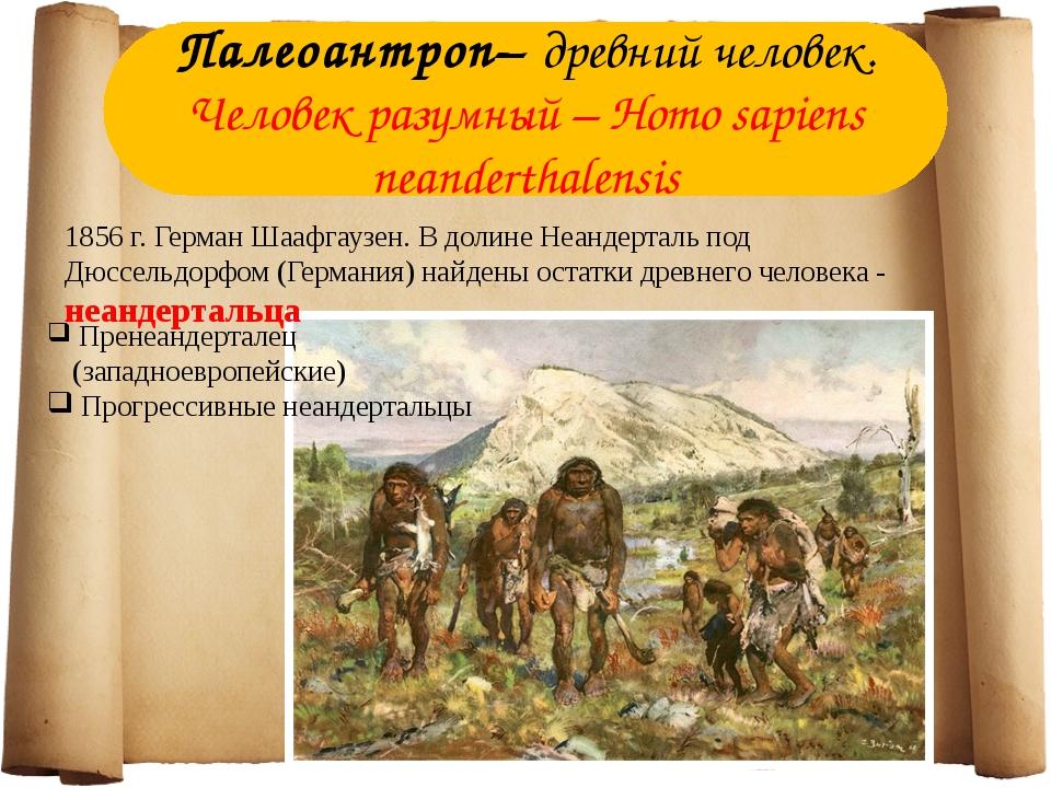 Палеоантроп– древний человек. Человек разумный – Homo sapiens neanderthalensi...