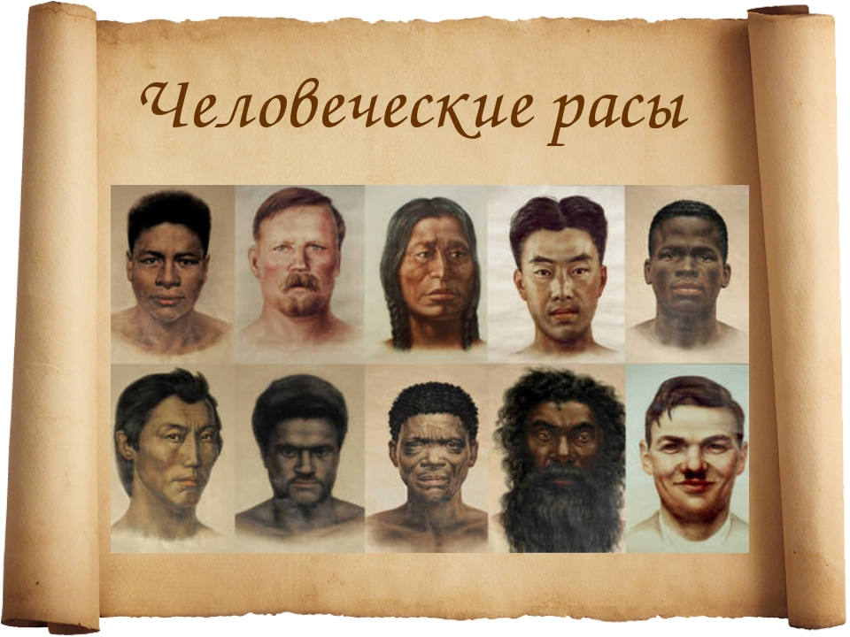 Человеческие расы