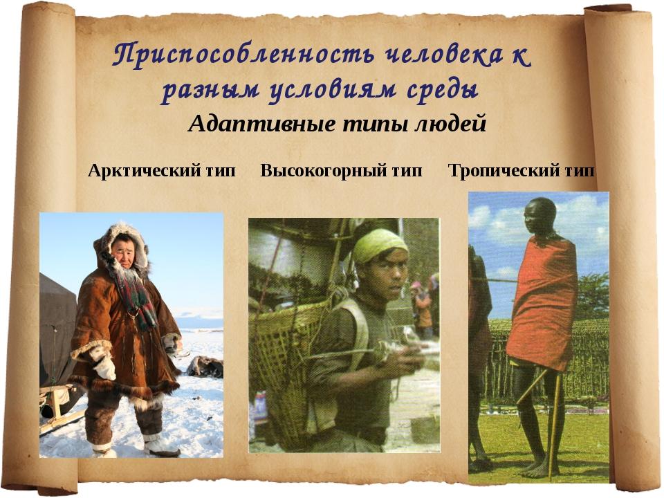 Приспособленность человека к разным условиям среды Адаптивные типы людей Аркт...