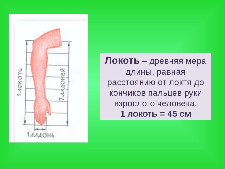 Локоть – древняя мера длины, равная расстоянию от локтя до кончиков пальцев р...