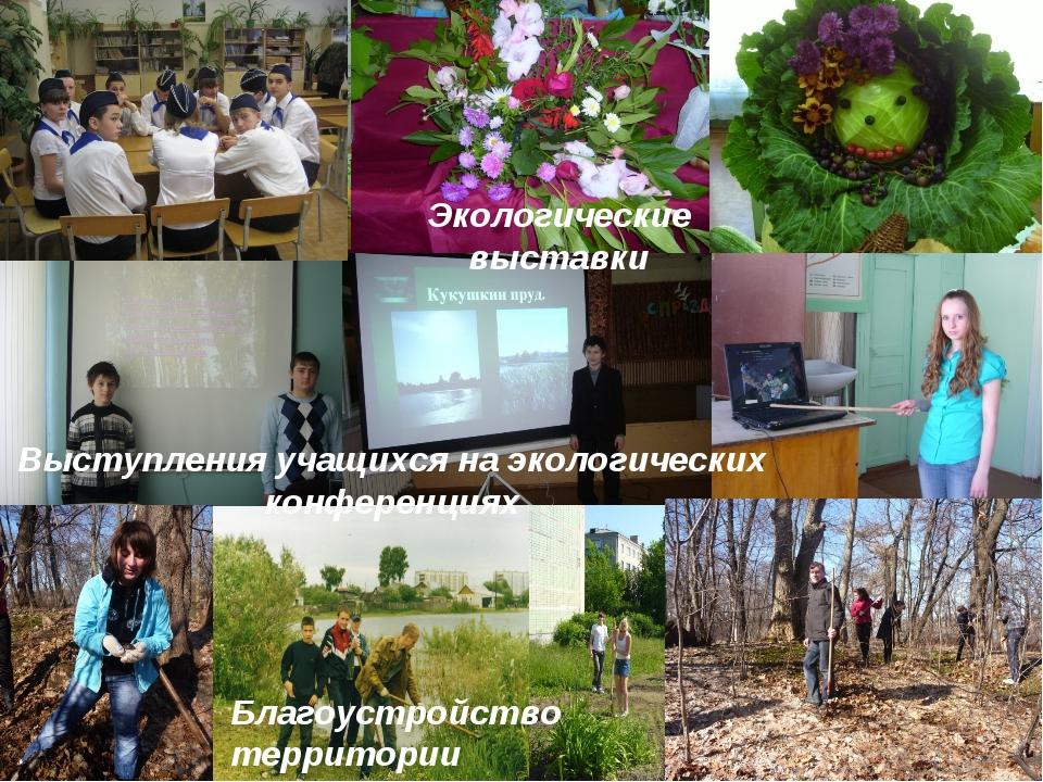 Благоустройство территории Экологические выставки Выступления учащихся на эко...