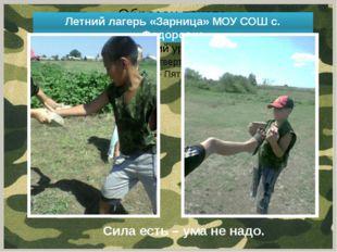 Летний лагерь «Зарница» МОУ СОШ с. Федоровка Сила есть – ума не надо.