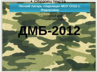 Летний лагерь «Зарница» МОУ СОШ с. Федоровка ДМБ-2012