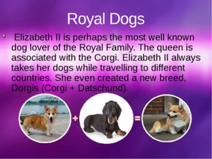 Royal Dogs Elizabeth II is perhaps the most well known dog lover of the Royal