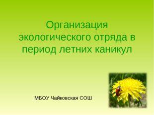 Организация экологического отряда в период летних каникул МБОУ Чайковская СОШ