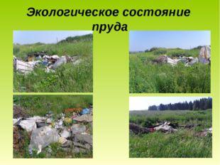 Экологическое состояние пруда