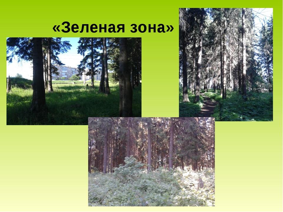 «Зеленая зона»