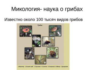 Микология- наука о грибах Известно около 100 тысяч видов грибов