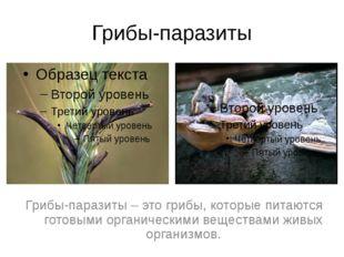 Грибы-паразиты Грибы-паразиты – это грибы, которые питаются готовыми органиче