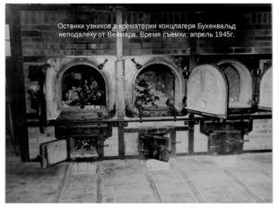 Останки узников в крематории концлагеря Бухенвальд неподалеку от Веймара.Вре