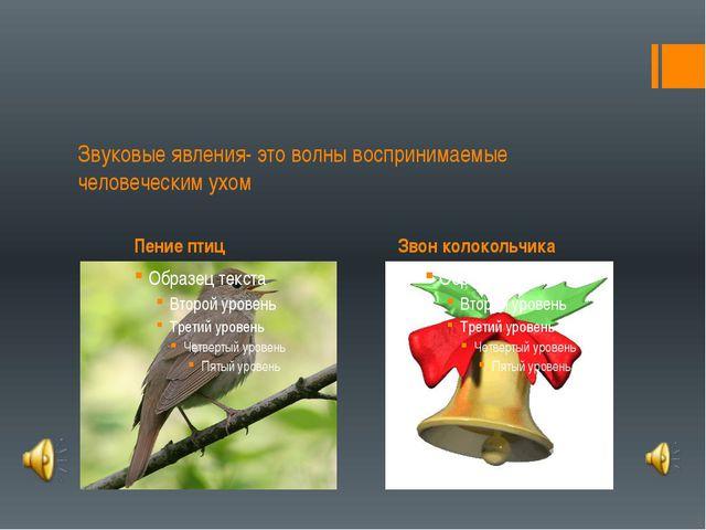 Пение птиц Звон колокольчика Звуковые явления- это волны воспринимаемые чело...