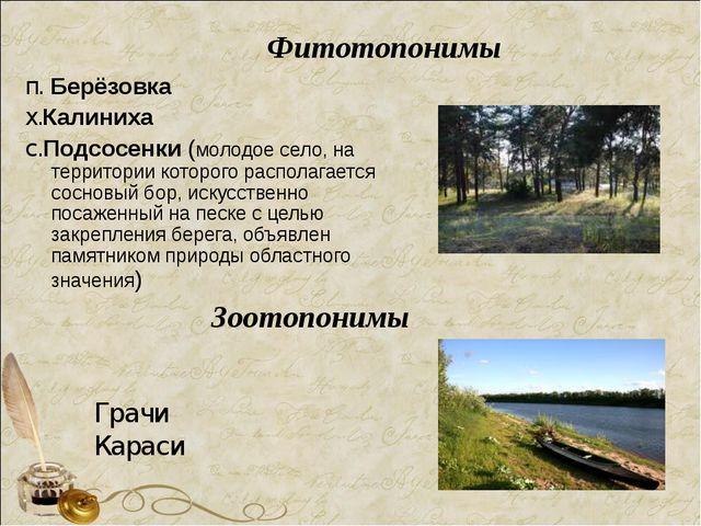 Фитотопонимы п. Берёзовка х.Калиниха с.Подсосенки (молодое село, на территори...
