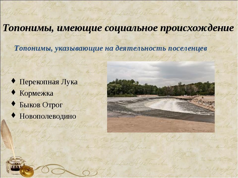 Топонимы, имеющие социальное происхождение Перекопная Лука Кормежка Быков От...