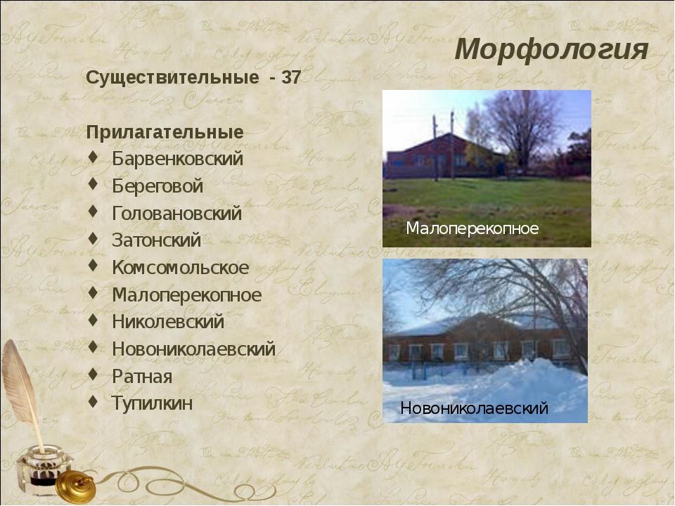 Морфология Существительные - 37 Прилагательные Барвенковский Береговой Голова...
