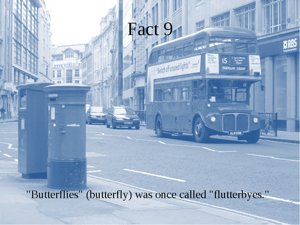 """Fact 9 """"Butterflies"""" (butterfly) was once called """"flutterbyes."""""""