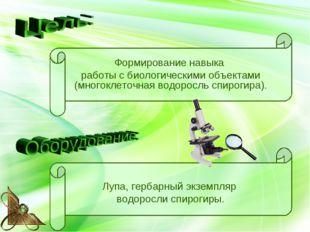 Формирование навыка работы с биологическими объектами (многоклеточная водорос