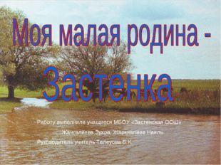 Работу выполнили учащиеся МБОУ «Застенская ООШ» Жангалиева Зухра, Жаркналиев