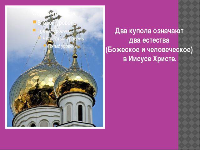 Два купола означают два естества (Божеское и человеческое) в Иисусе Христе.